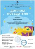diplom_ilya_chipizubov_2116396