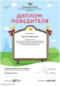 diplom_kristina_shemyakina_20262993