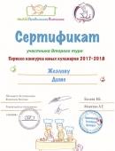 diplom-13