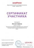 certificate_maksim_gorbunov_6138856
