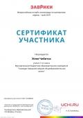 certificate_zhenya_chibitok_6138859