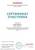 certificate_zhenya_chibitok_6138859_0
