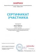 certificate_zhenya_chibitok_6138859a