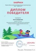 diplom_katya_sumarokova_6138852k